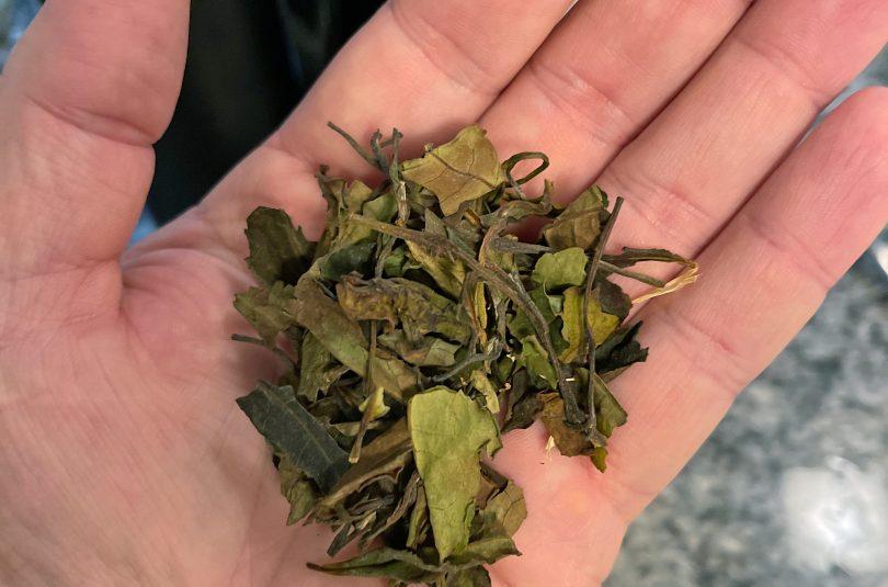 White Magic (Vanilla Almond Orange Blossom White Tea)