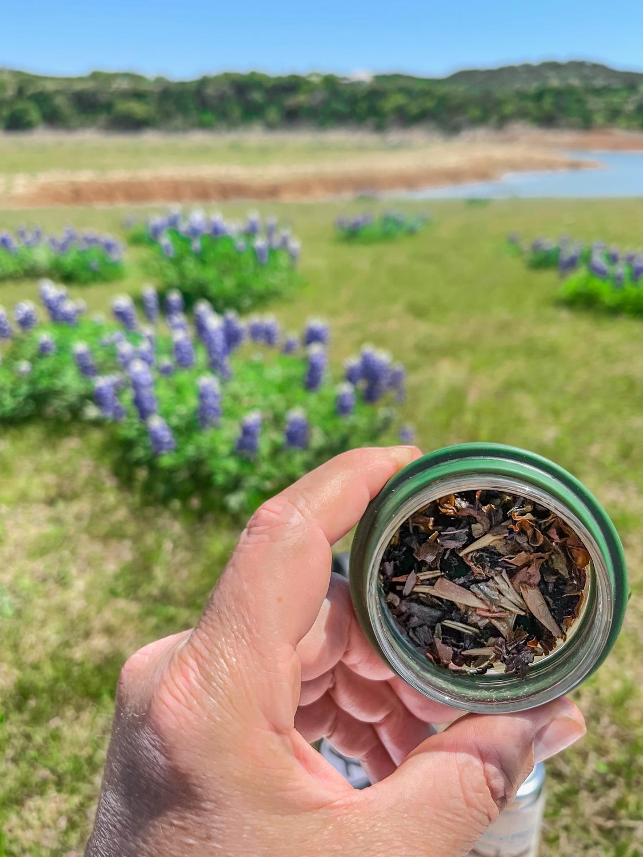 1,000 Mile Tea – Sipping Streams
